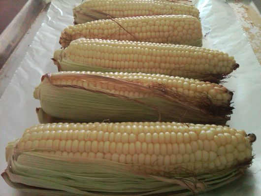 corn on the cob recipe, eating made easy