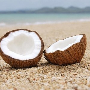 Coconut: Is It Worth All the Hype?