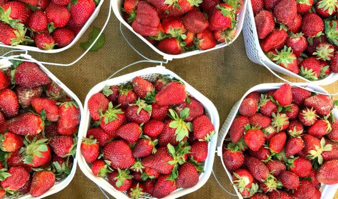 9 Ways to Make Organic Food More Affordable