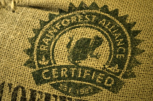 rainforest alliance coffee