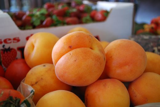how to eat fresh apricots