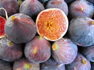 what to do with fresh figs