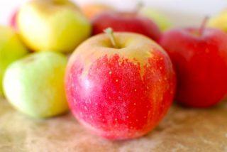 best apples