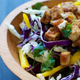 Spicy Winter Slaw with Salsa Roasted Tofu